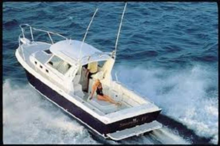 Sister Ship photo - Photo 1 of 55 - 2005 Albin 28 TE for sale